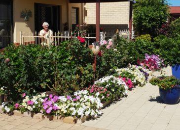 More lovely gardens of Belswan